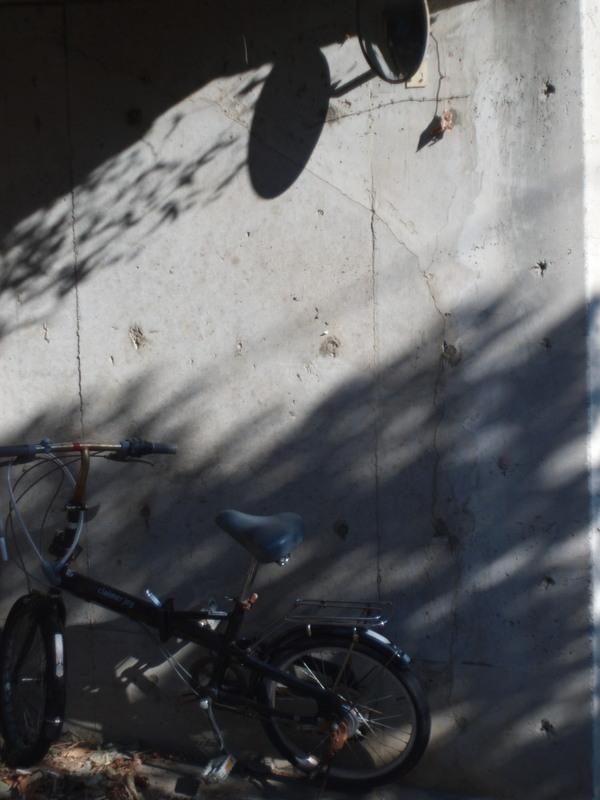 Bike2p1095910